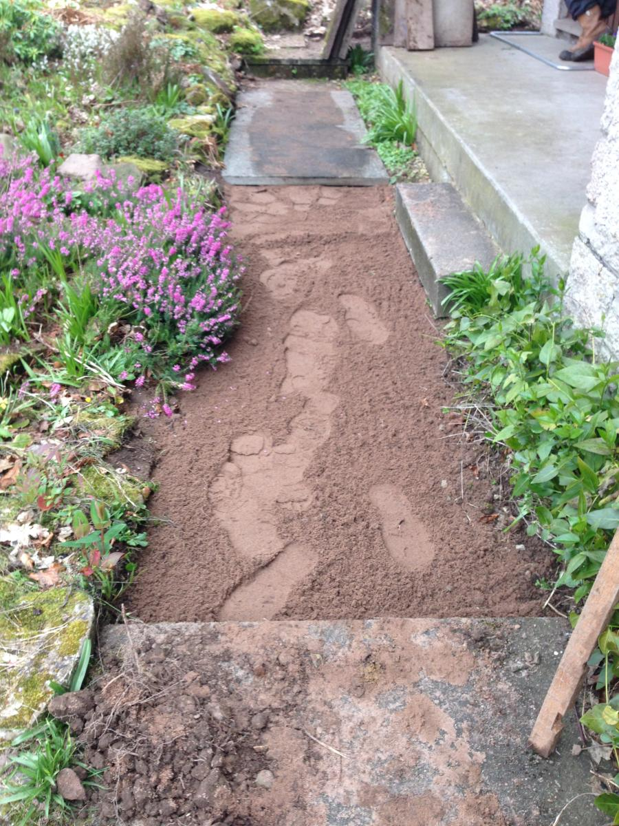 New sand levelling at the front